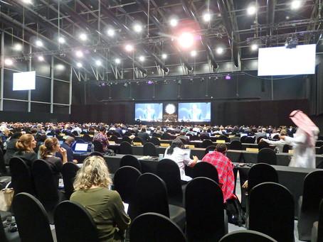 ラムサール条約第13回締約国会議