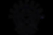 Professional Pem Logo I.png