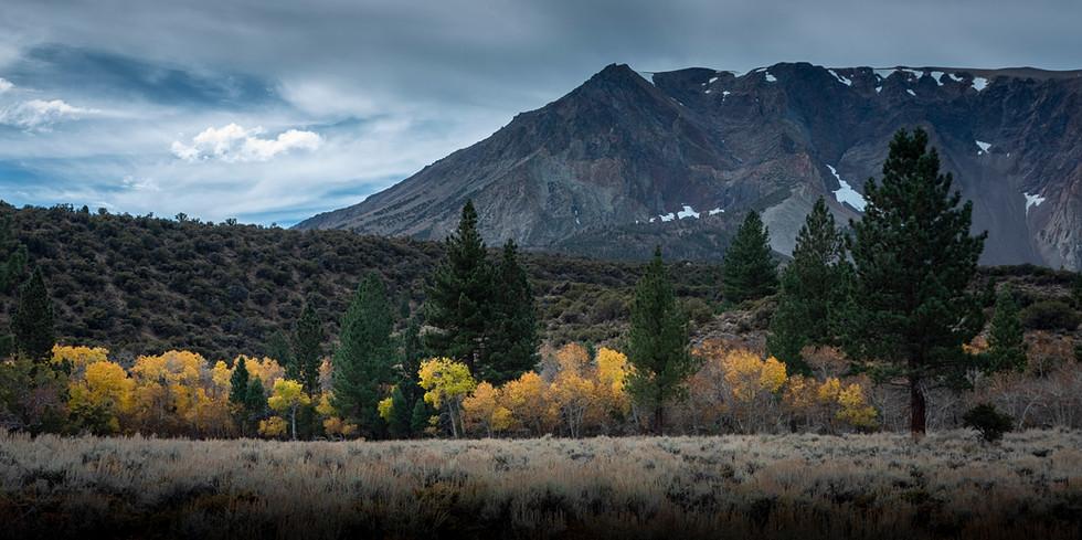 Near-Parker-Lake-Trail.jpg
