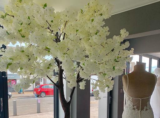 Ivory Blossom Tree.jpg