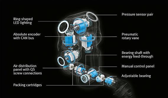 00000-bioniccobot-info-en-1532x900px.jpg