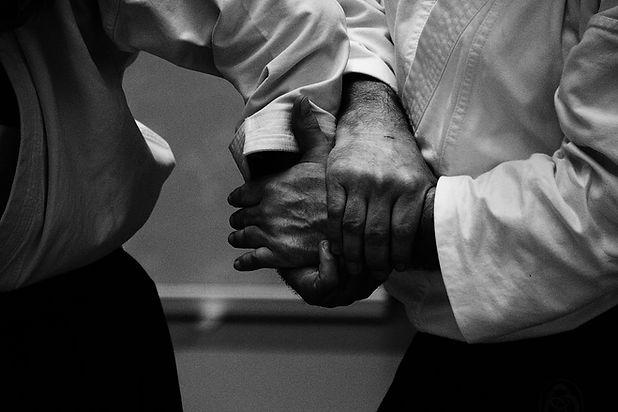 aikido tajik karate