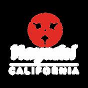 hayashi white logo.png