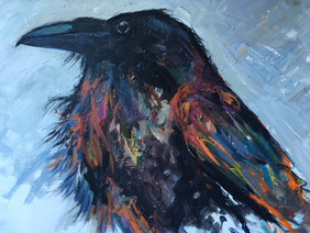 Northern Raven - SOLD
