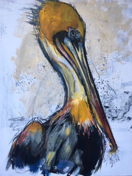 California Brown Pelican - SOLD