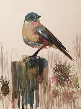 The Bluebird - SOLD