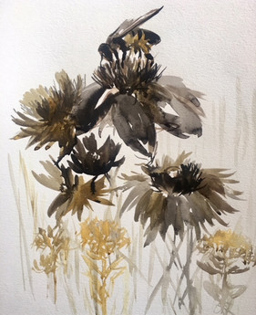 Bumblebee and Wildflowers, Gualala, CA.  #2 - SOLD