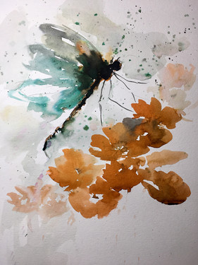 Dragonfly and California Poppies - SOLD