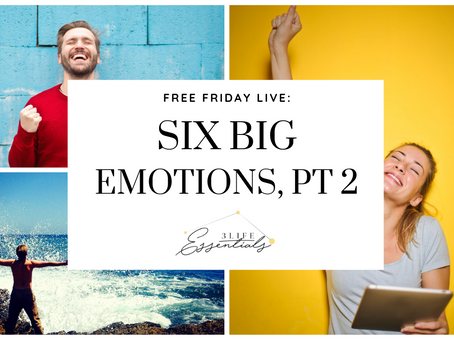 Six Big Emotions & Returning to Joy!