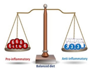 balance 3-6.jpg