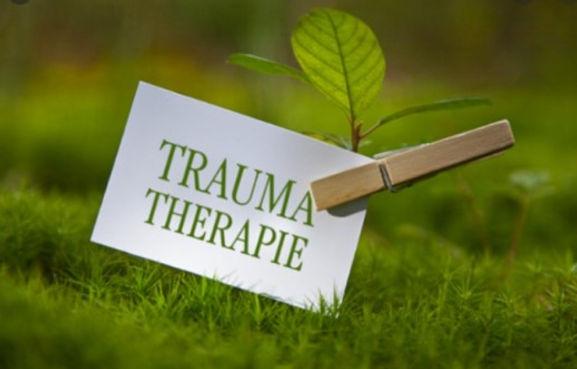 trauma 80pr.jpg