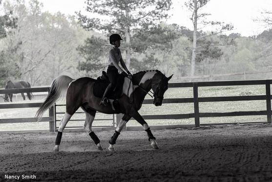 GAHA Clinic Rider at JAG Arabian Sport Horses