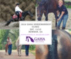 2018 GAHA Horsemanship Clinic Sat. 8_11