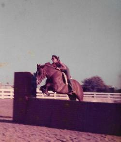 Quarter Horse - San's March Hare