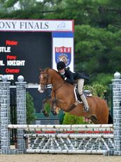Half Arabian at USEF Pony Finals
