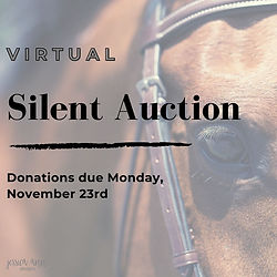 Virtual Silent Auction Image.jpg