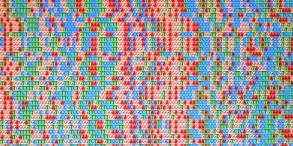 img.gene1.horizontal.png