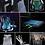 Thumbnail: POwerFIT Extended Back