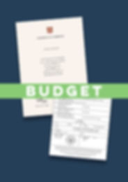 Budget Express Apostille Degree.jpg
