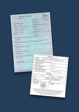 DBS Certificate Apostille.jpg