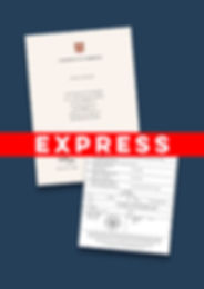 Express Apostille Degree.jpg