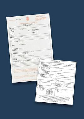 Adoption Certificate Apostille.jpg