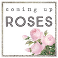 Coming Up Roses Branding