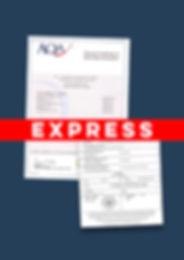 Express Apostille GCSE Certificate.jpg