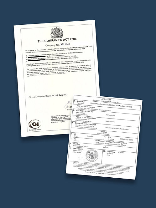 Certificate of Good Standing Apostille + Options