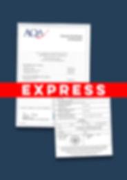 Express Apostille A-Level Certificate.jp