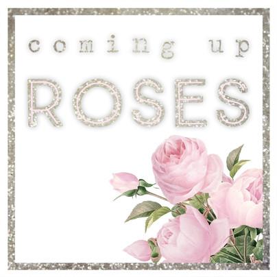 Coming Up Roses Branding Glitter!