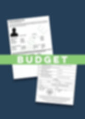 Budget Apostille ACRO Certificate