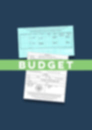 Budget Apostille Certificate of No Imped