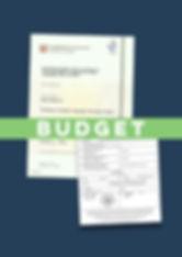 Budget Apostille CELTA Certificate.jpg