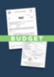 Budget Apostille Decree Absolute.jpg