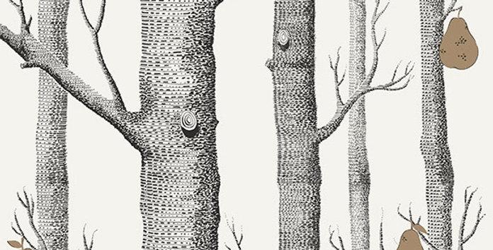 WOODS & PEARS par Cole & Son