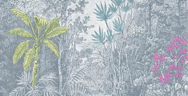 RAIN FOREST par Les Dominotiers