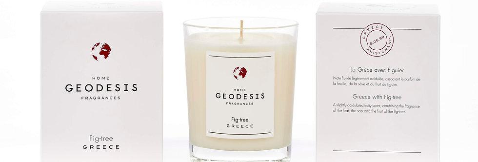 BOUGIE PARFUMEE CLASSIQUE, Fig Tree, par Géodésis