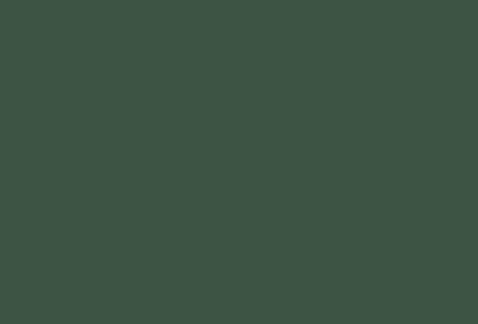 DUCK GREEN (W55) par Farrow & Ball