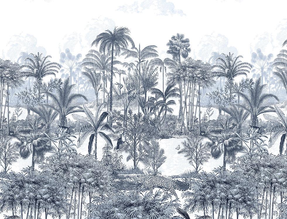 AMAZONE par Isidore Leroy