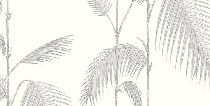 PALM LEAVES par Cole & Son