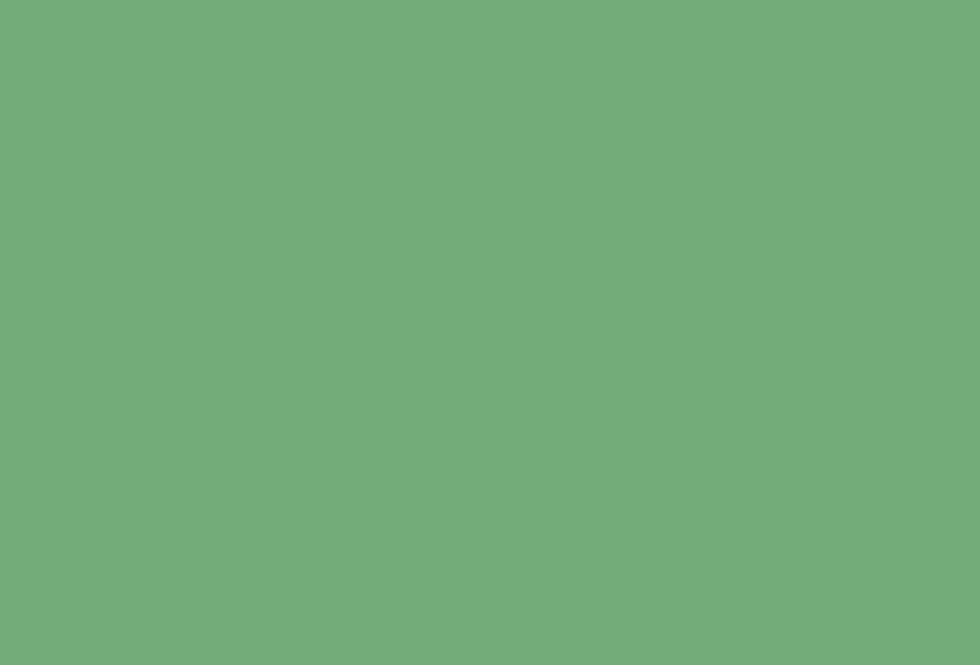 EMERALD GREEN (W53) par Farrow & Ball