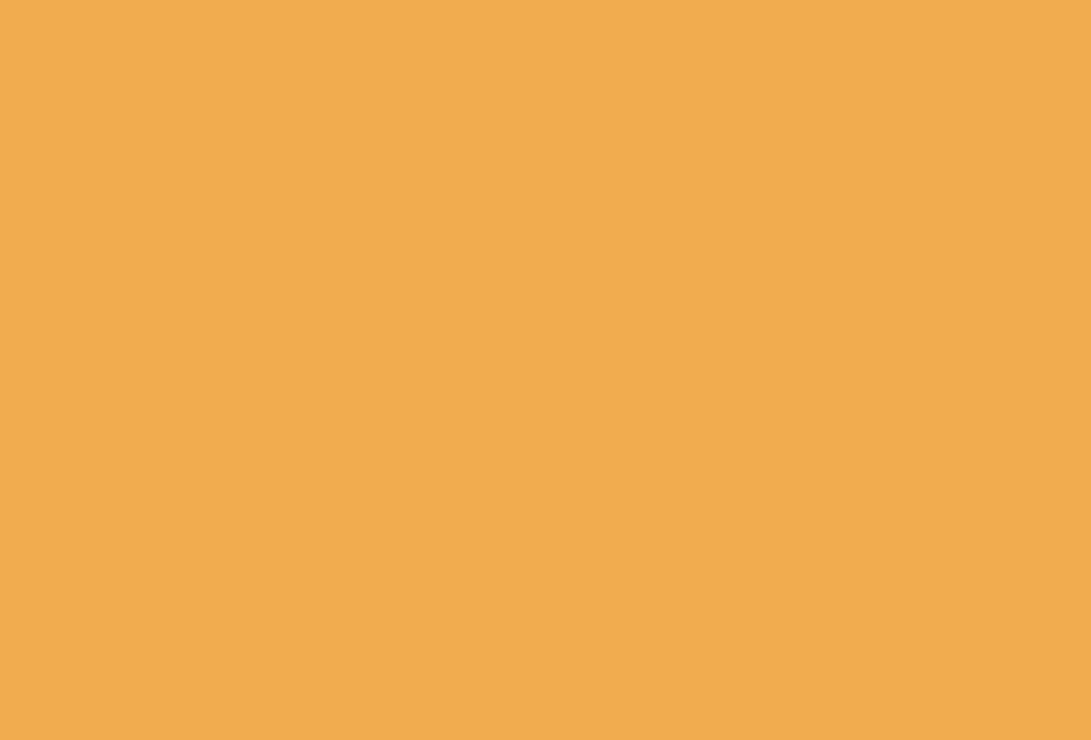DUTCH ORANGE (W76) par Farrow & Ball