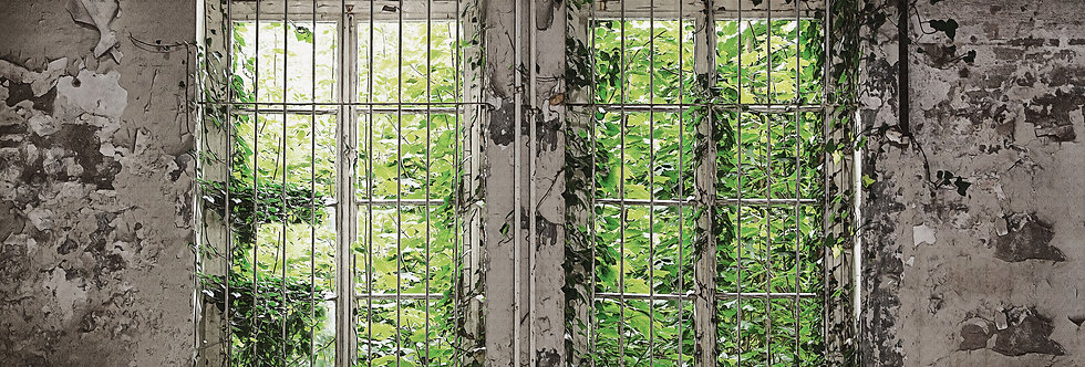 WINDOW GARDEN par Les Dominotiers