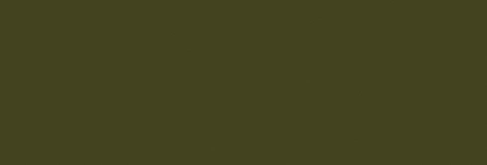 OLIVE COLOUR (72) par Little Greene
