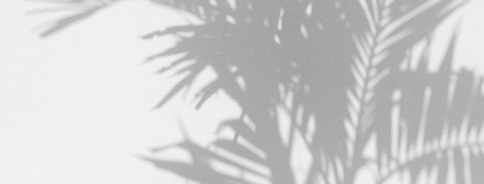 PALM SHADOW par Les Dominotiers