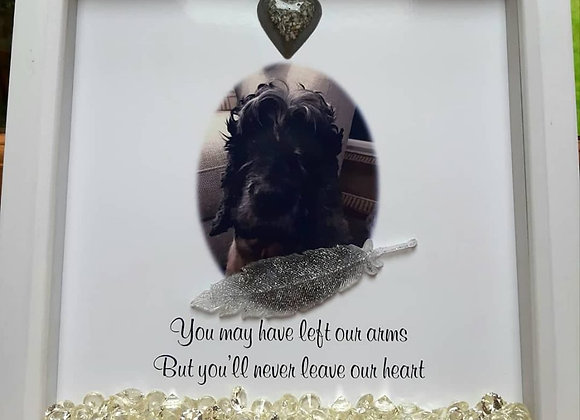 Memorial pet picture and ashes frame with ashes, hair or burial soil