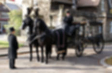 Black Horses With traditional Plumes