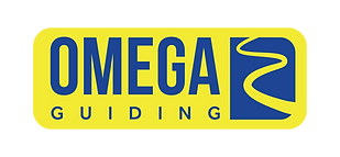 OMEGA GUIDES LOGO Yellow-01.png