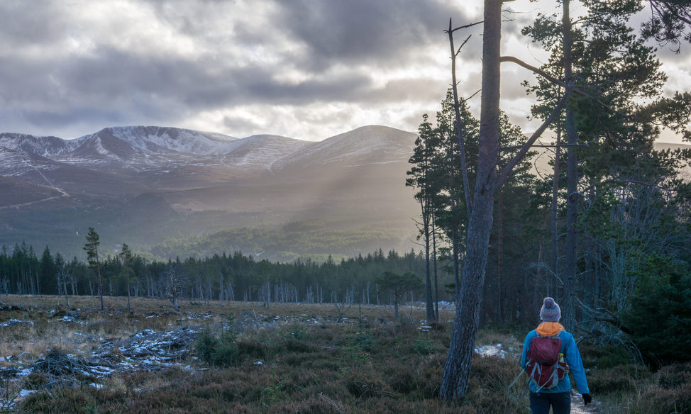 Cairngorms Hiking
